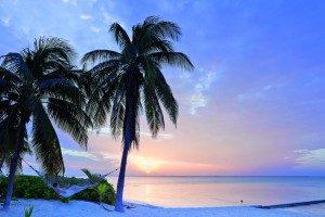 Cayman Saaret